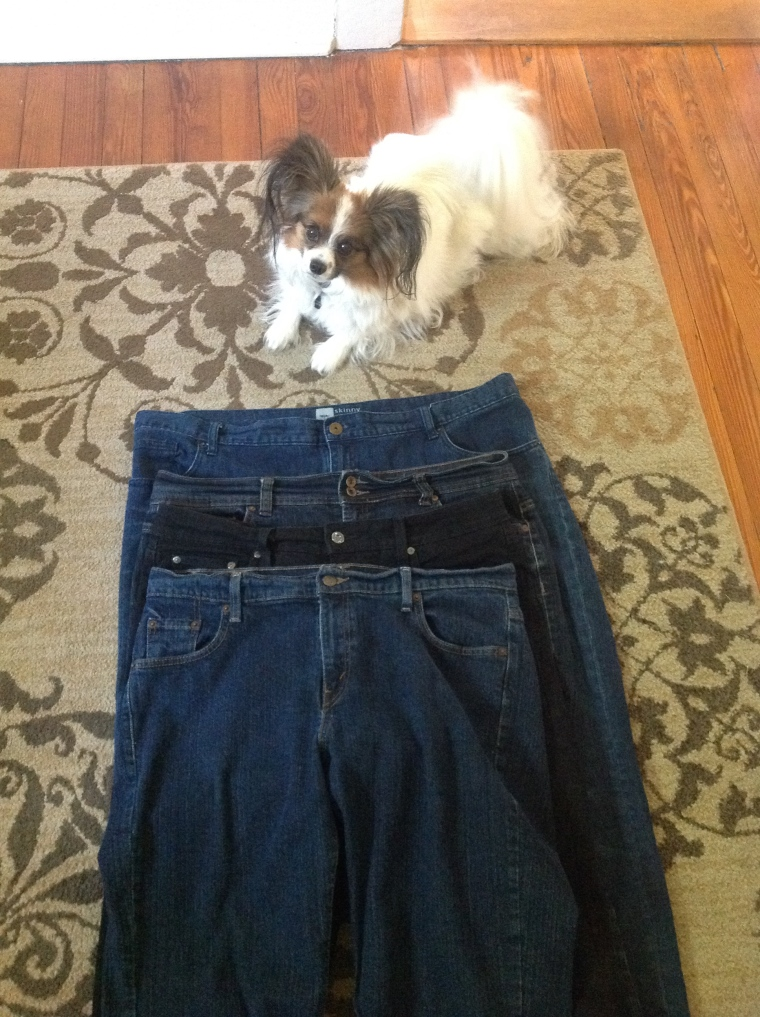 "Four pairs of jeans in -- funny enough -- two sizes.  ""More runs with me please!"" doggie sez."